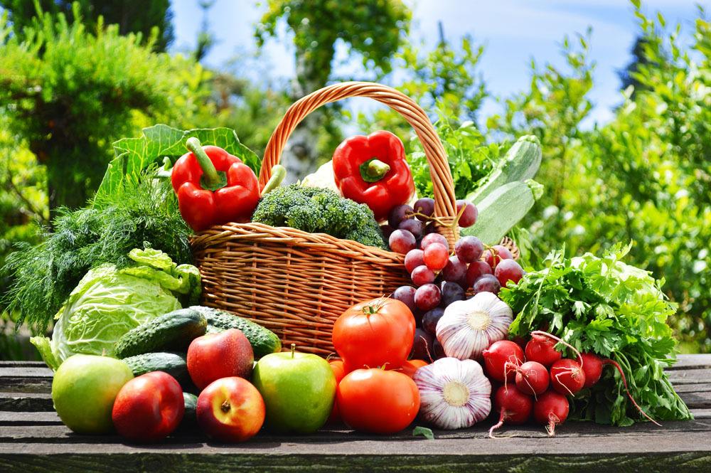 市场预警——未来10年,中国农产品市场最需要种、养什么?